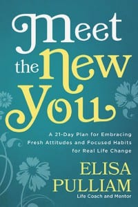 Meet the New You book cover